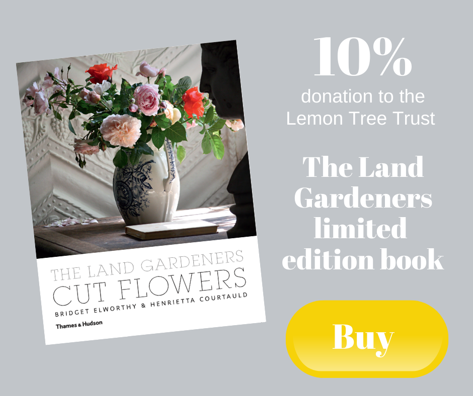 10% donation to the Lemon Tree Trust - The Land Gardeners limited edition book 'Cut Flowers'