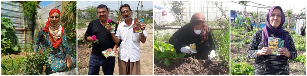 Collage of people receiving seed packets to grow food and flowers in their home gardens and our community garden in Domiz 1 camp, KRI