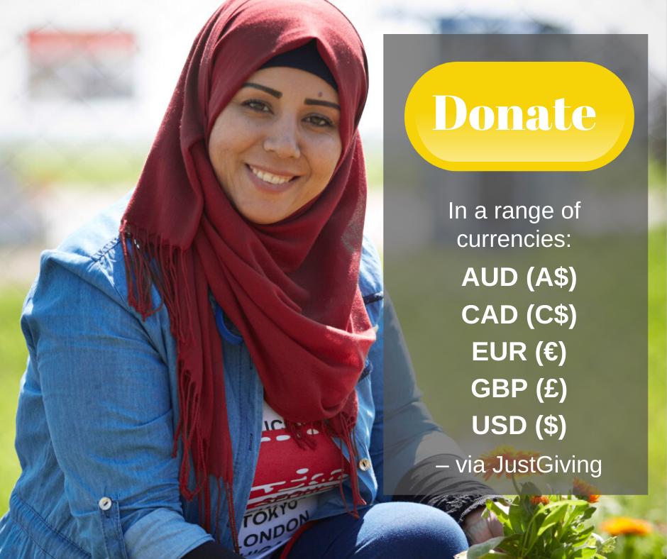 Donate via JustGiving graphic