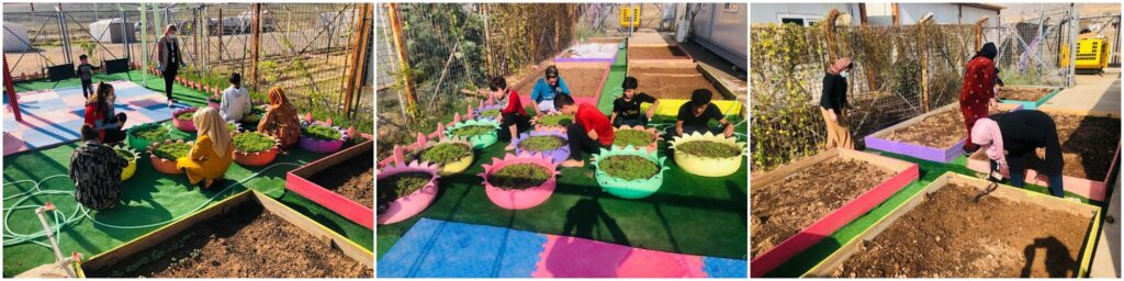 Photo collage of the community garden activities with groups of children and women at the SEED Community Centre in Bersive 1 camp, Kurdistan Region of Iraq.