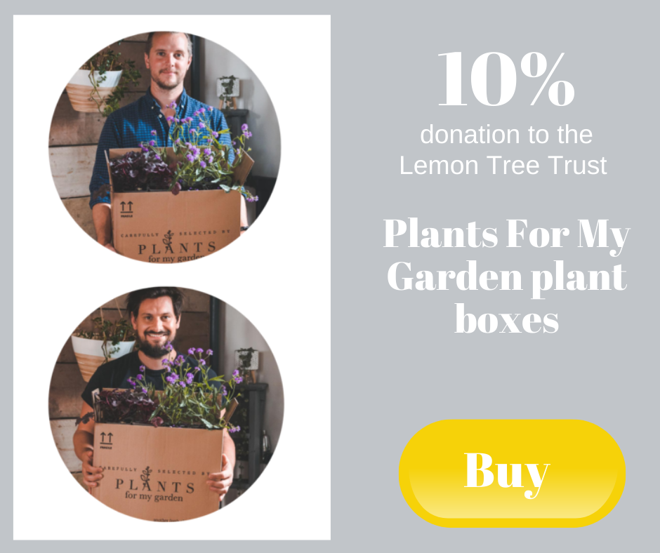 10% donation to the Lemon Tree Trust - Plants For My Garden plant boxes