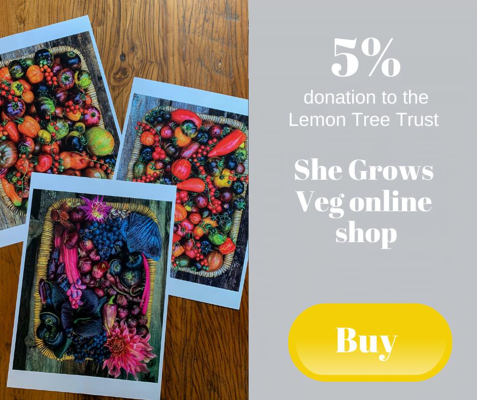 5% donation to the Lemon Tree Trust - She Grows Veg online shop