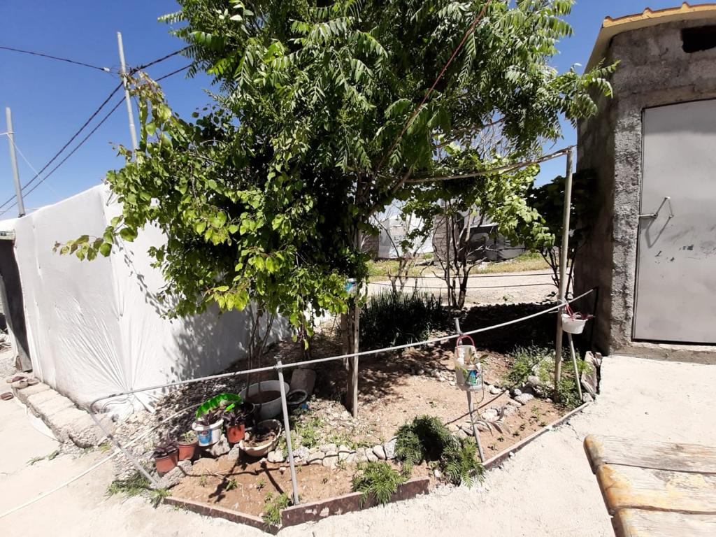 Hajar Eido Khadida's home garden, Khanki camp, Kurdistan Region of Iraq