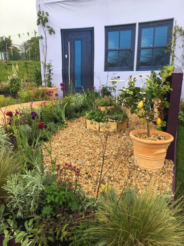 John Thoumire's garden 'Bayet' at Gardening Scotland with lemon tree and other plants