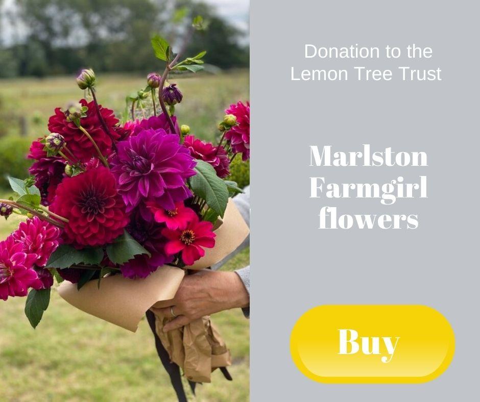 Donation to the Lemon Tree Trust - Marlston Farmgirl Flowers
