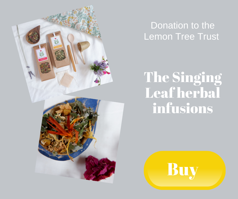 Donation to the Lemon Tree Trust - The Singing Leaf herbal infusions